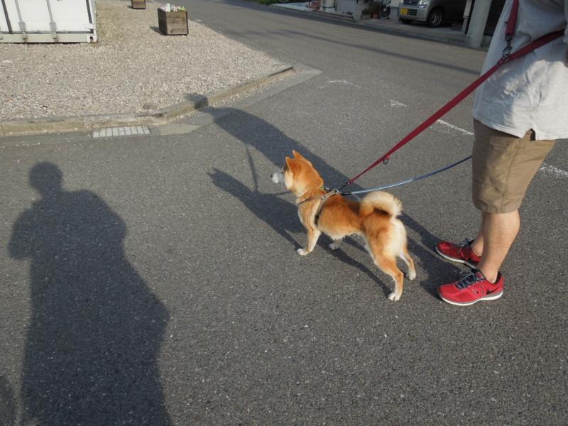 f:id:miyuki1967:20140508121421j:image:w450
