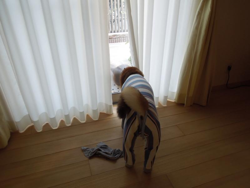 f:id:miyuki1967:20140509111038j:image:w450