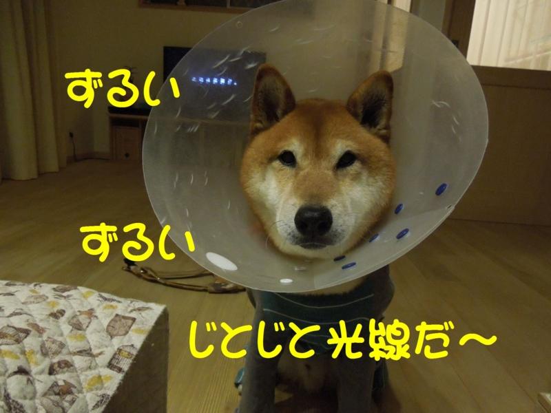 f:id:miyuki1967:20140509144337j:image:w450