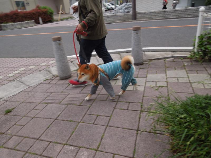 f:id:miyuki1967:20140512111714j:image:w450