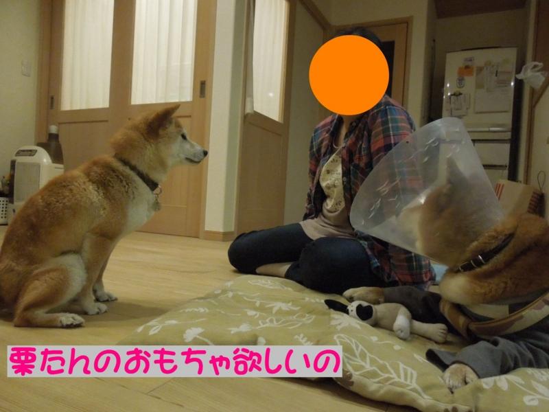 f:id:miyuki1967:20140513104831j:image:w450
