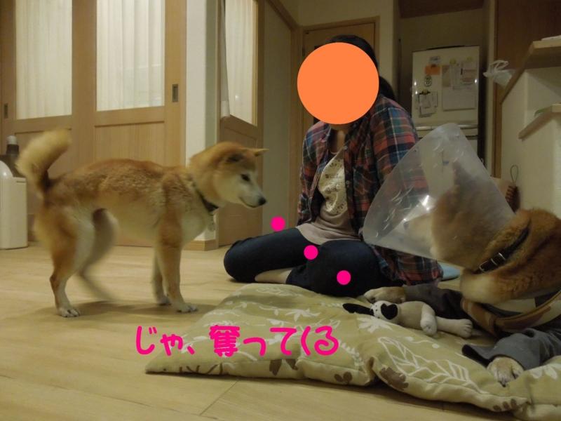 f:id:miyuki1967:20140513111429j:image:w450