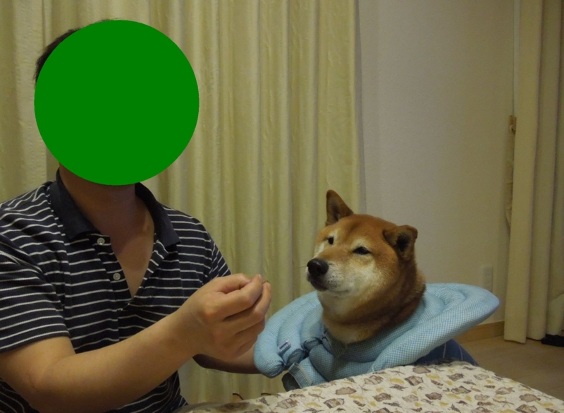 f:id:miyuki1967:20140520115329j:image:w450
