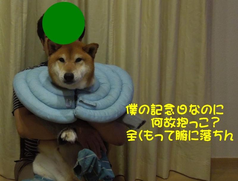 f:id:miyuki1967:20140520115506j:image:w450