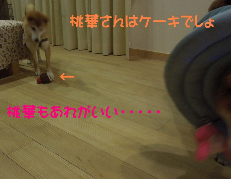 f:id:miyuki1967:20140521111142j:image:w450