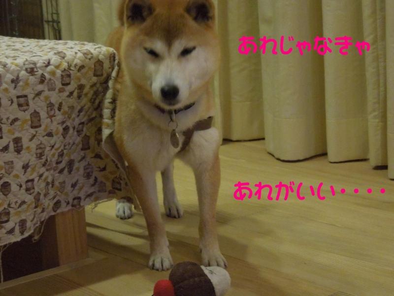 f:id:miyuki1967:20140521111552j:image:w450
