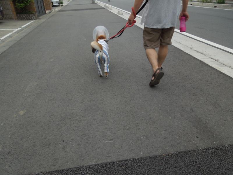 f:id:miyuki1967:20140618111131j:image:w450