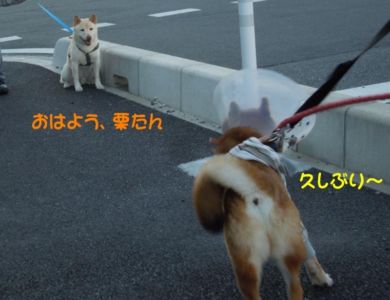 f:id:miyuki1967:20140806113459j:image:w450