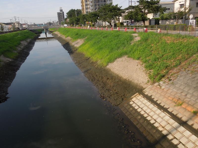 f:id:miyuki1967:20140808131421j:image:w450