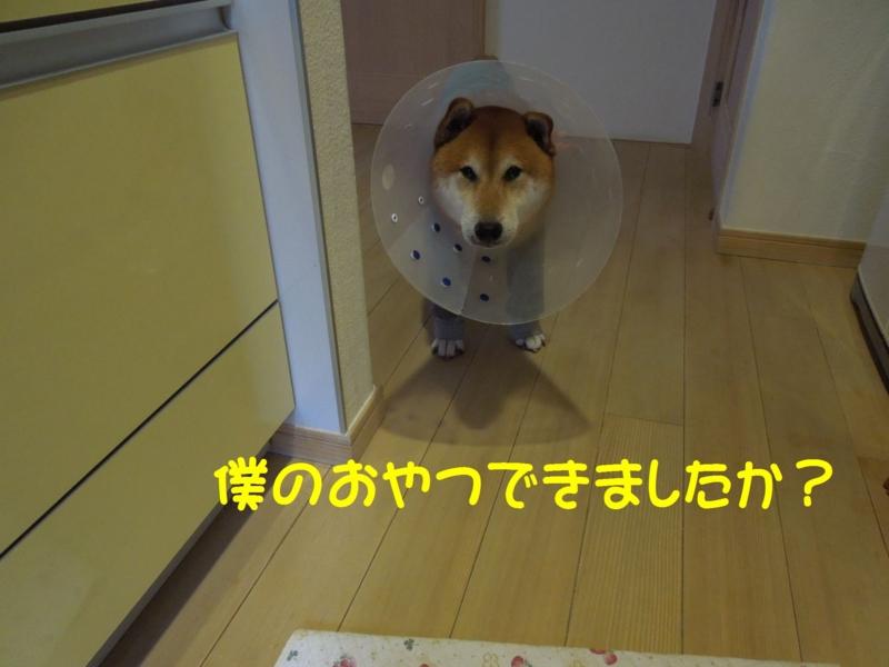 f:id:miyuki1967:20140919113506j:image:w450