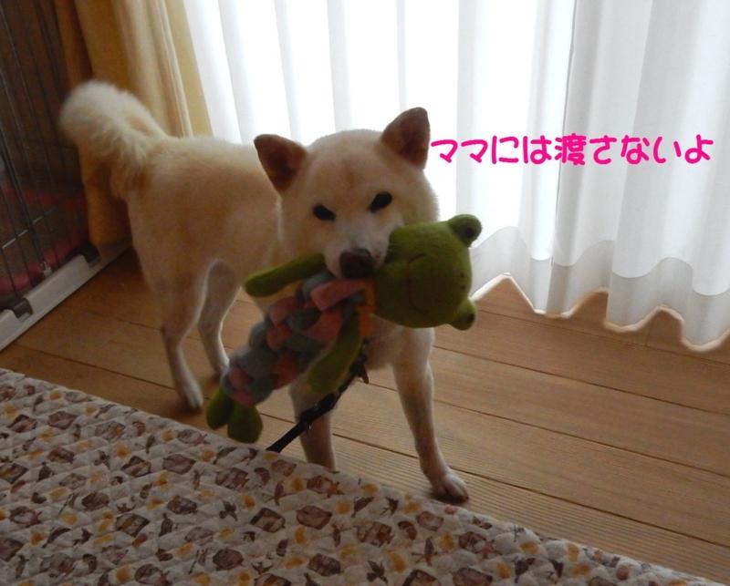 f:id:miyuki1967:20150415110728j:image