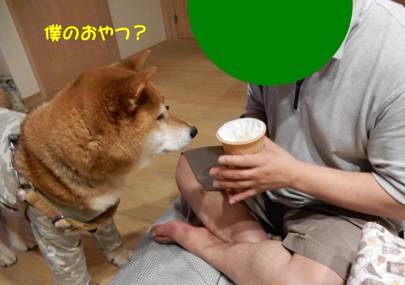f:id:miyuki1967:20150604095909j:image:w450