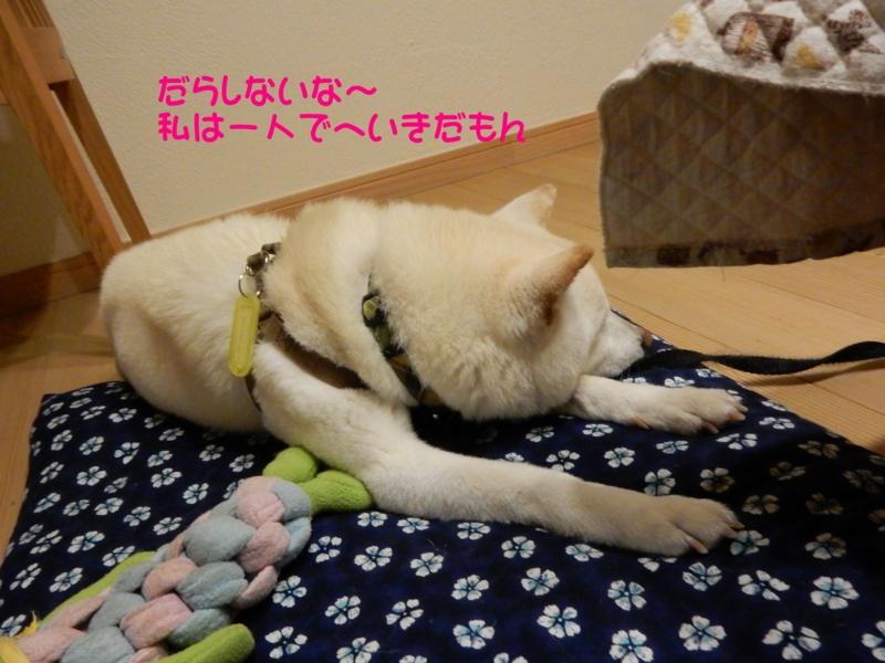 f:id:miyuki1967:20150626114737j:image:w450