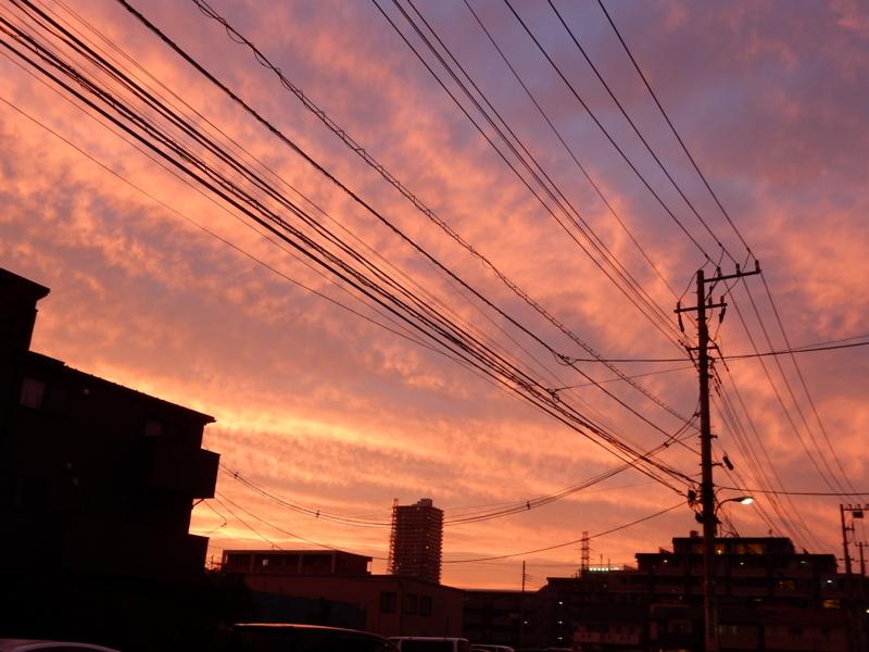 f:id:miyuki1967:20150629103535j:image:w450