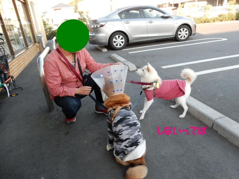 f:id:miyuki1967:20151106165104j:image:w450