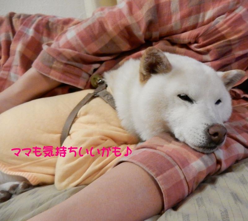 f:id:miyuki1967:20160317114746j:image:w450