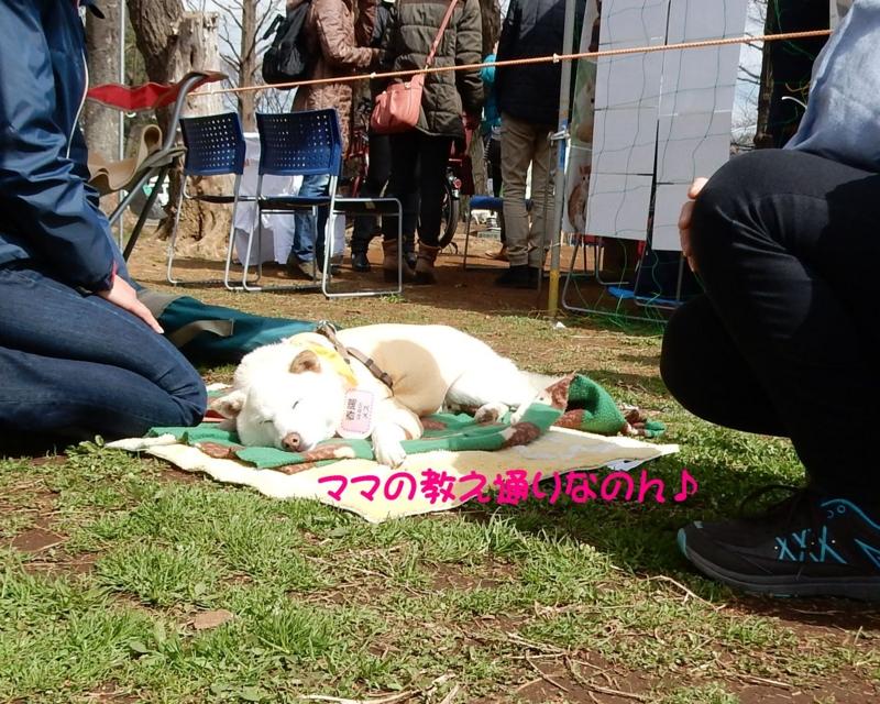 f:id:miyuki1967:20160322094806j:image:w450
