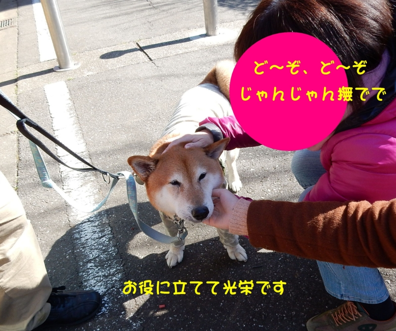 f:id:miyuki1967:20170217115534j:image:w450