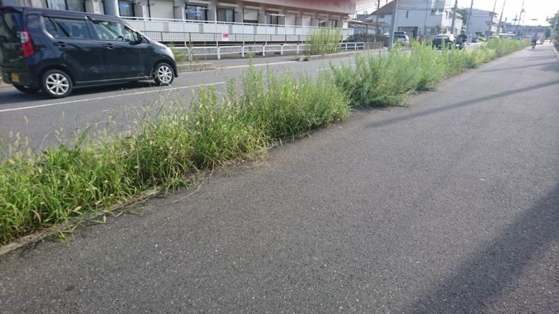 f:id:miyuki1967:20170922111609j:image:w450