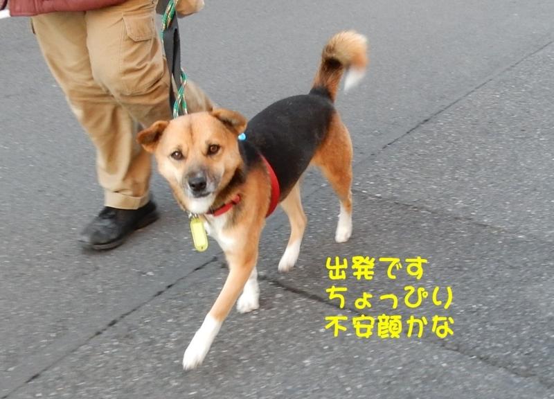 f:id:miyuki1967:20180111100026j:image:w450