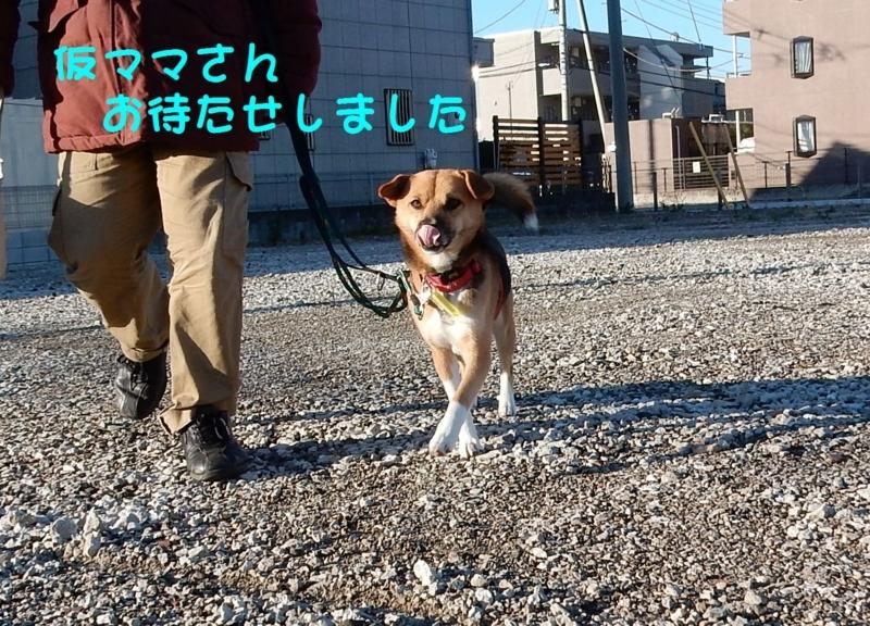 f:id:miyuki1967:20180111100030j:image:w450