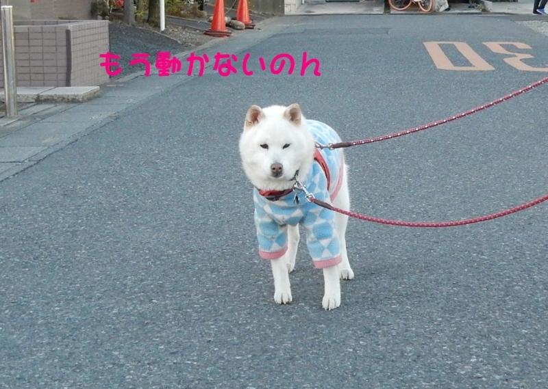 f:id:miyuki1967:20180111102212j:image:w450