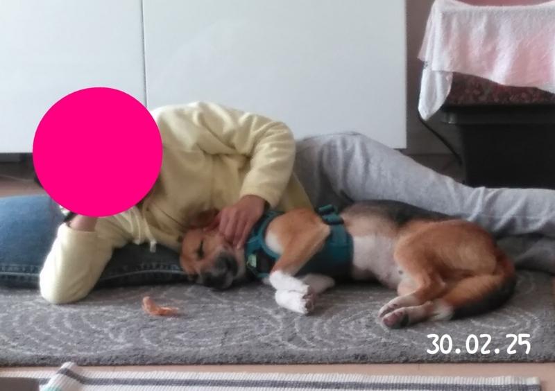 f:id:miyuki1967:20180323153015j:image:w450