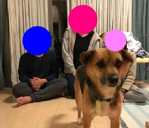 f:id:miyuki1967:20180406160615j:image:w450