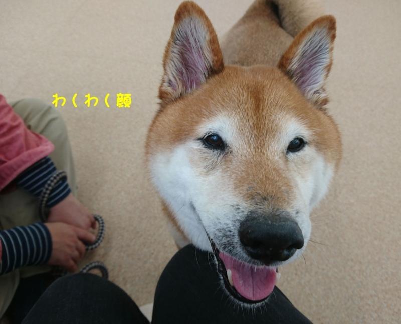 f:id:miyuki1967:20180416111307j:image:w450