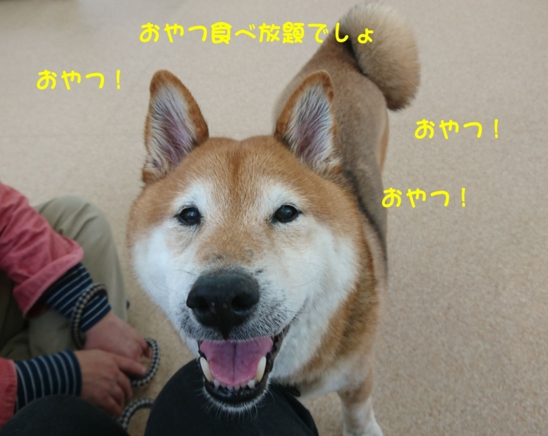f:id:miyuki1967:20180416111308j:image:w450