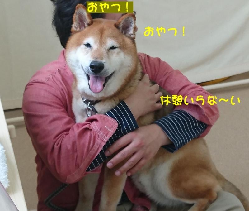 f:id:miyuki1967:20180416111310j:image:w450