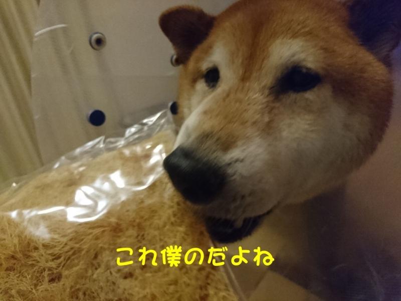 f:id:miyuki1967:20180802104805j:image:w450