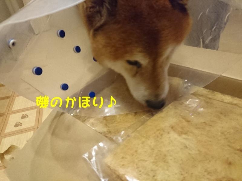 f:id:miyuki1967:20180802104812j:image:w450