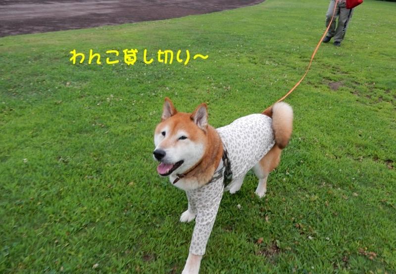 f:id:miyuki1967:20180807095329j:image:w450