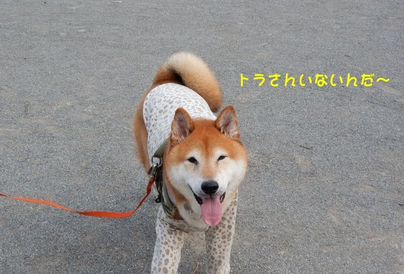 f:id:miyuki1967:20180807100358j:image:w450