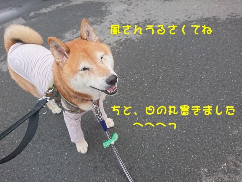 f:id:miyuki1967:20180809113722j:image:w450
