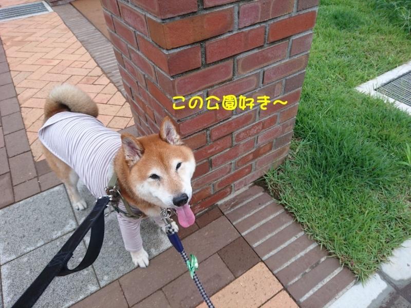 f:id:miyuki1967:20180809114036j:image:w450