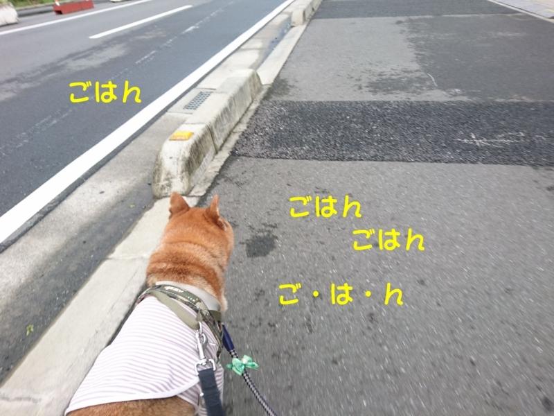 f:id:miyuki1967:20180809114252j:image:w450