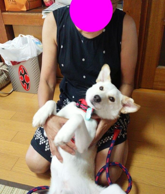 f:id:miyuki1967:20180823115820j:image:w450