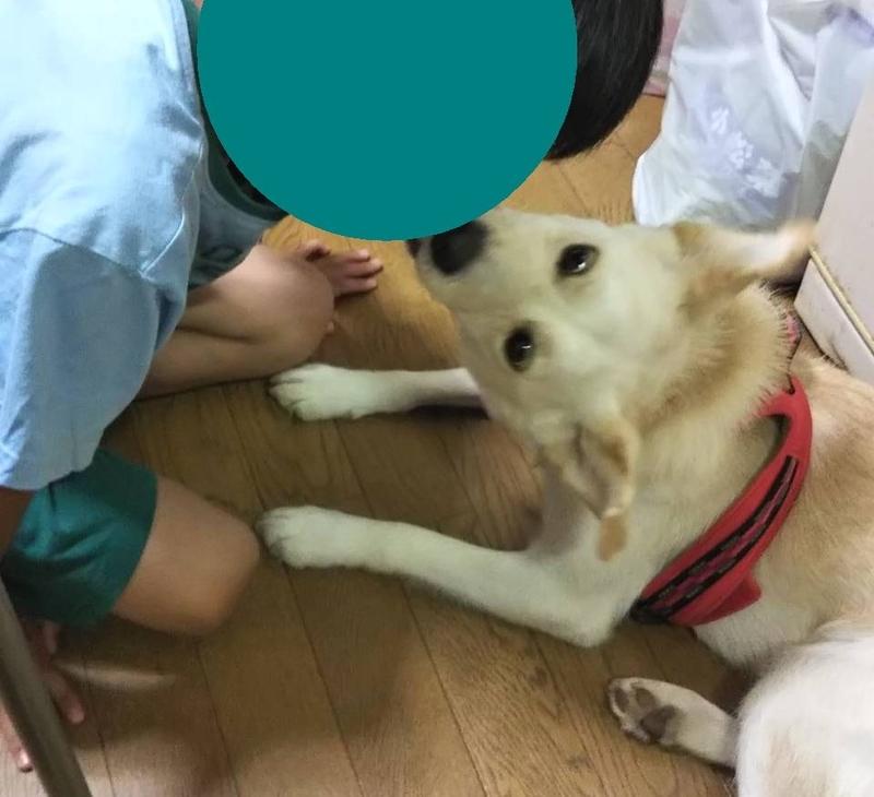 f:id:miyuki1967:20180831115545j:image:w450