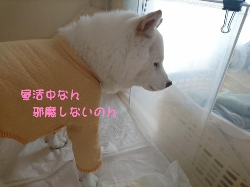 f:id:miyuki1967:20180905110237j:image:w450