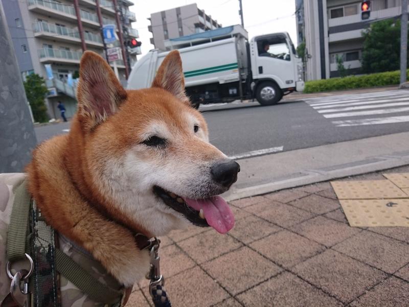 f:id:miyuki1967:20180912101714j:image:w450