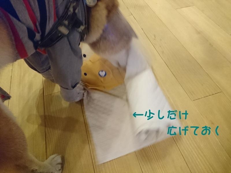 f:id:miyuki1967:20181011101336j:image:w450