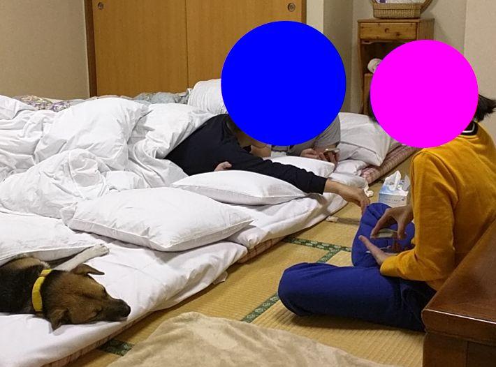 f:id:miyuki1967:20190111114115j:image:w450