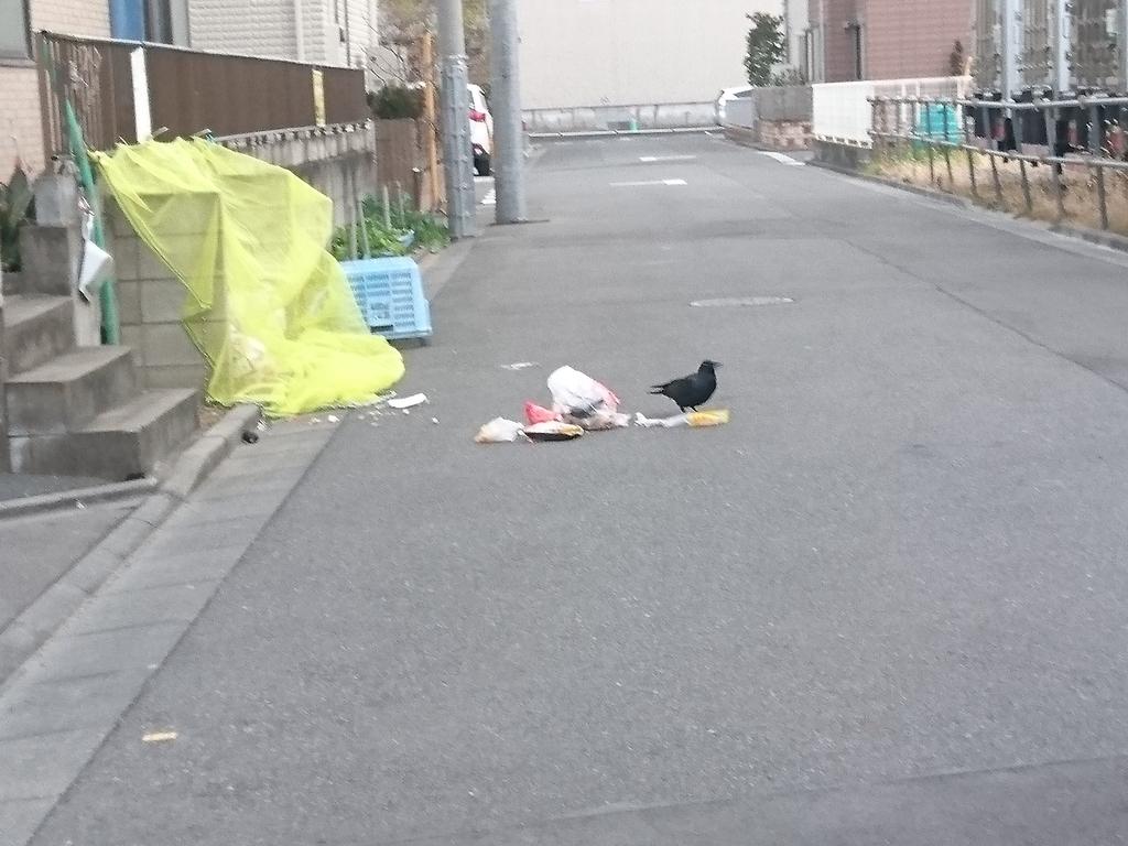 f:id:miyuki1967:20190215104906j:plain:w450