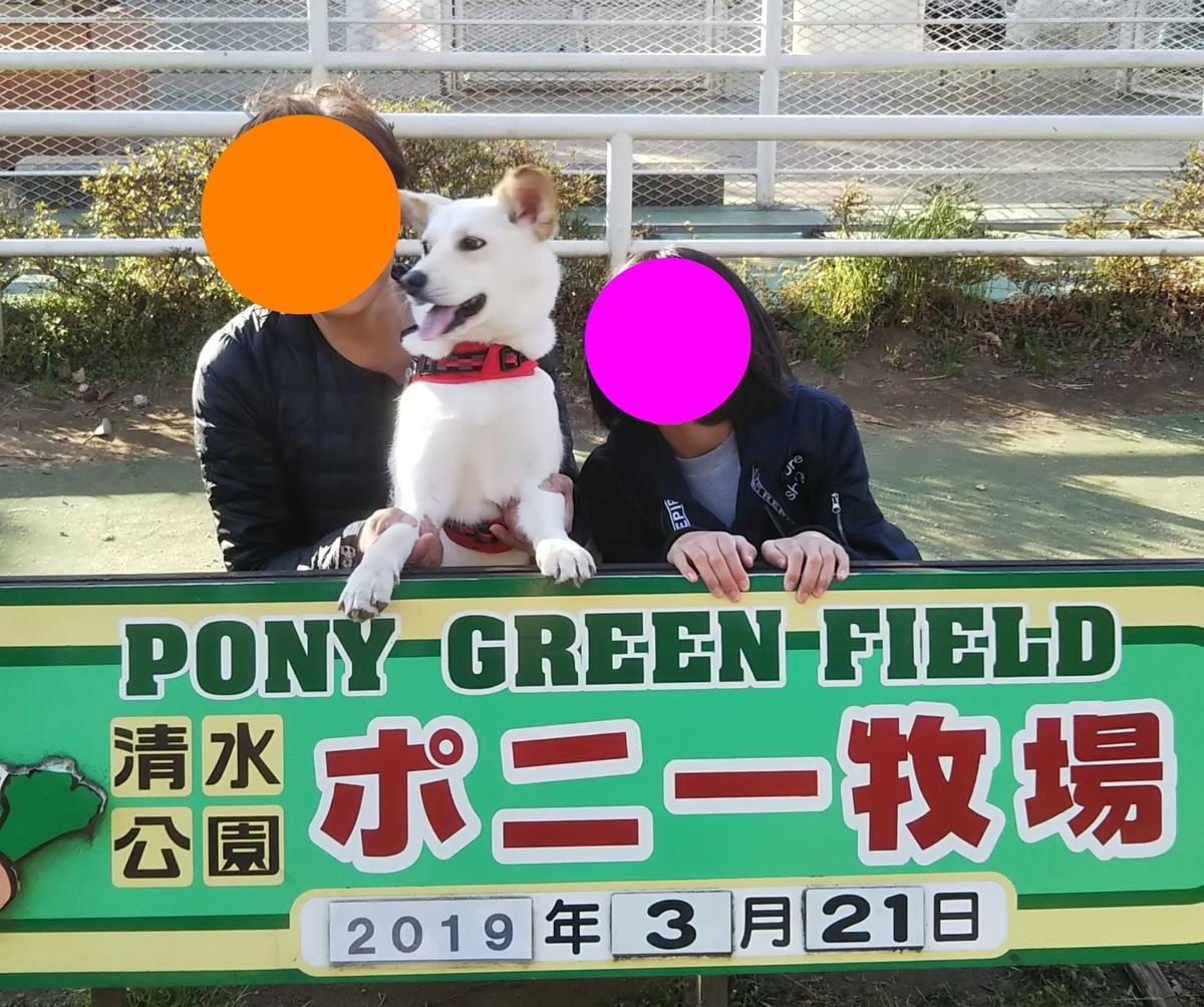 f:id:miyuki1967:20190327101454j:plain:w450
