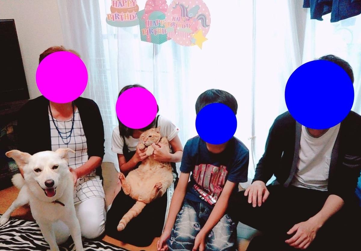 f:id:miyuki1967:20190703103034j:plain:w450