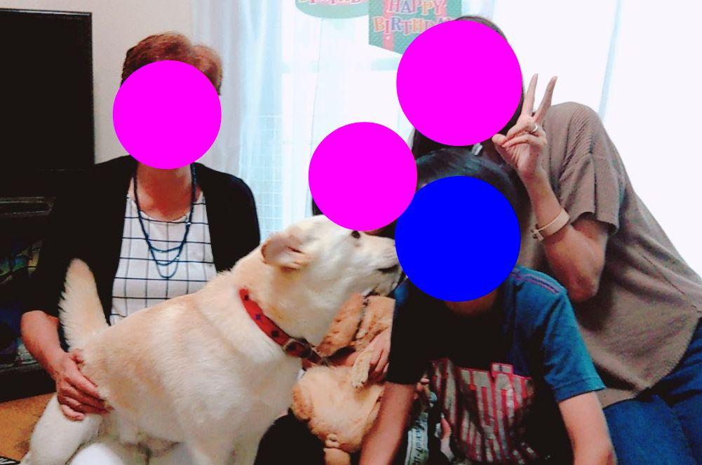 f:id:miyuki1967:20190703103050j:plain:w450