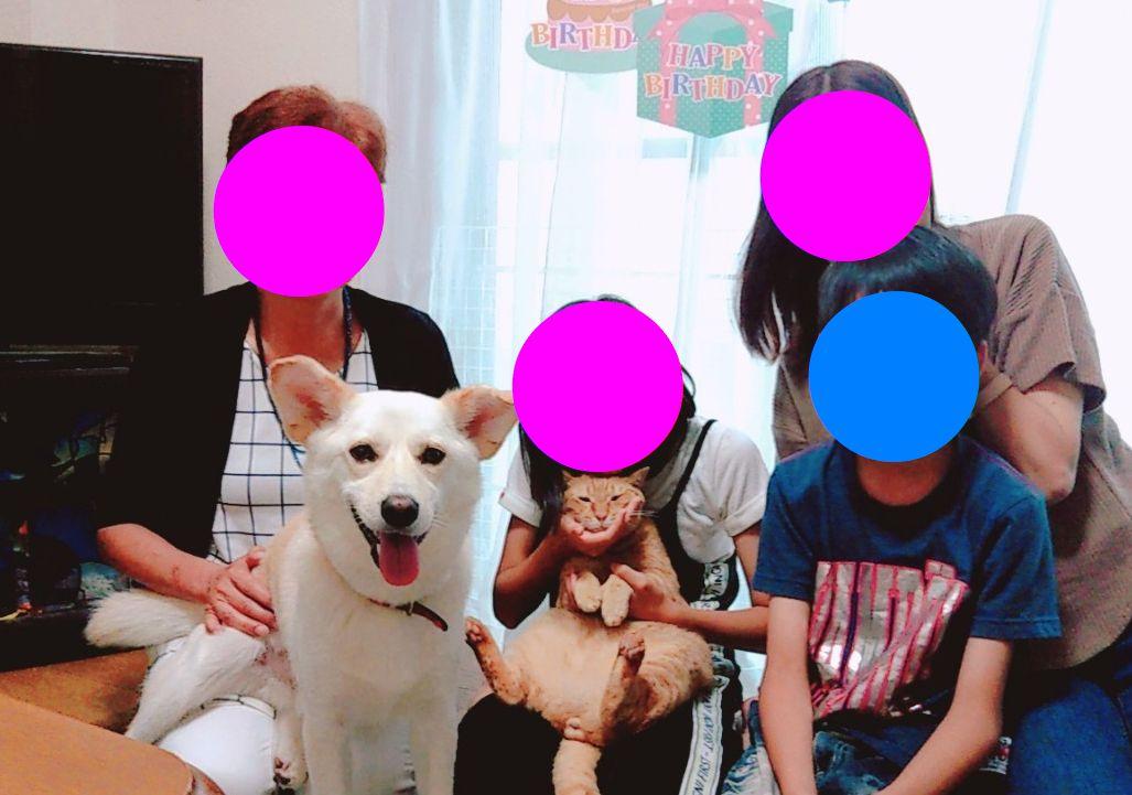 f:id:miyuki1967:20190703103108j:plain:w450