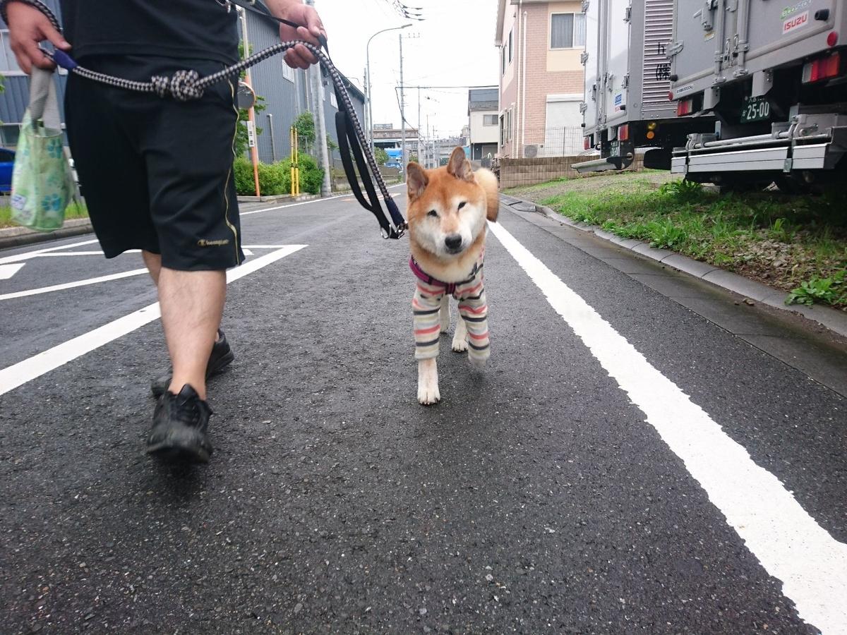 f:id:miyuki1967:20190703115222j:plain:w450